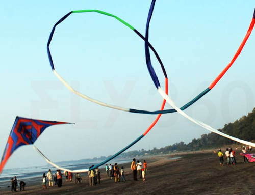 Why Kites Need A Tail – The Science Behind It!