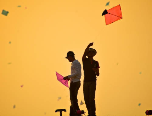 A Beginner's Guide To Kite Fighting
