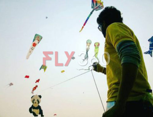 Types of Single Line Kites You'll Be Amazed to see!