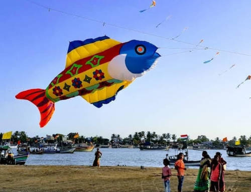 Kites: The Stress Reliever of this Century!