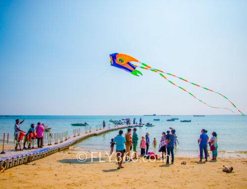Kite Flying Event in Andaman and Nicobar Islands with FLY360!