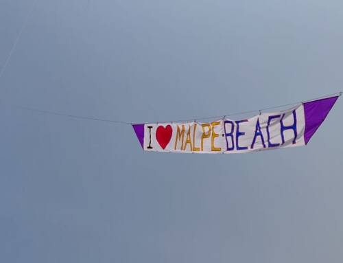 Malpe beach Kite Festival: Filling The Sky With Kites!